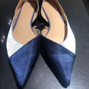 Zara Flats Tricolor Ballerina Pointed Blue Flats